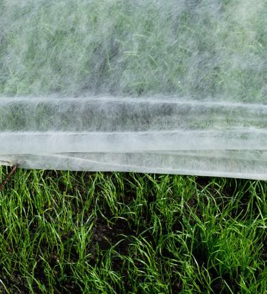 Fiberduk gräsmatta och växter