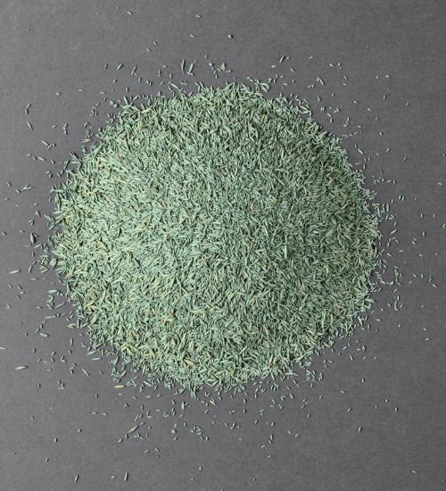 Gräsfrö renovering SOS 5kg hög med gräsfrö