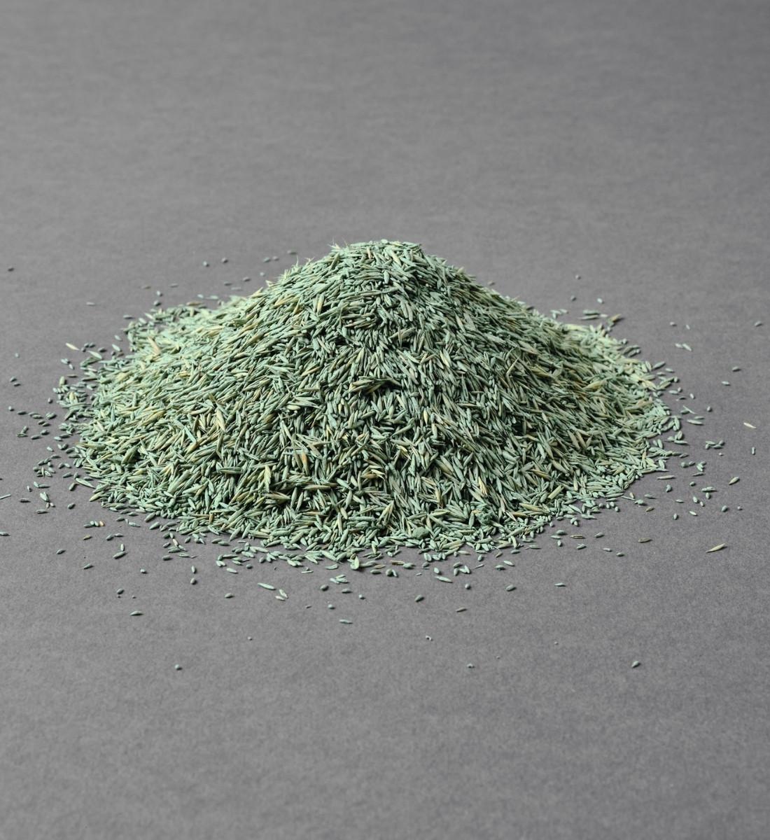 Gräsfrö Bar Power RPR rajgräs 1kg hög med gräsfrö