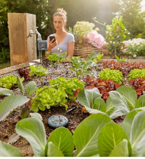 Fuktighetssensor i trädgården