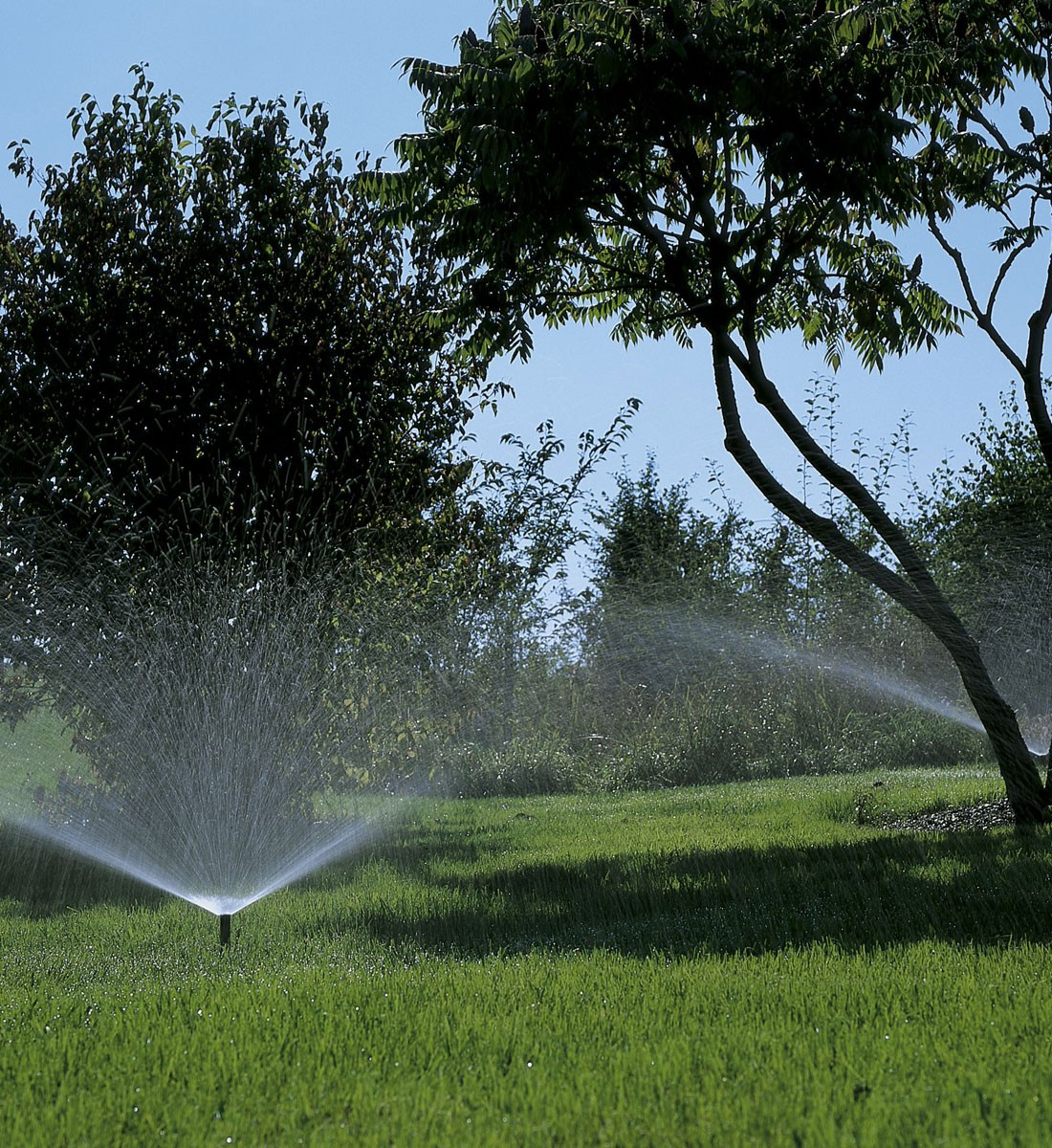 Pop-up Sprinkler S 80