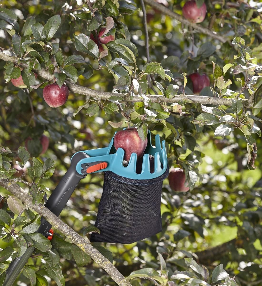 Fruktplockare